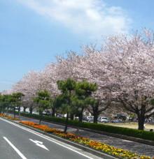 $クソみてえなウンコのアメブロ公式ガイド富士山