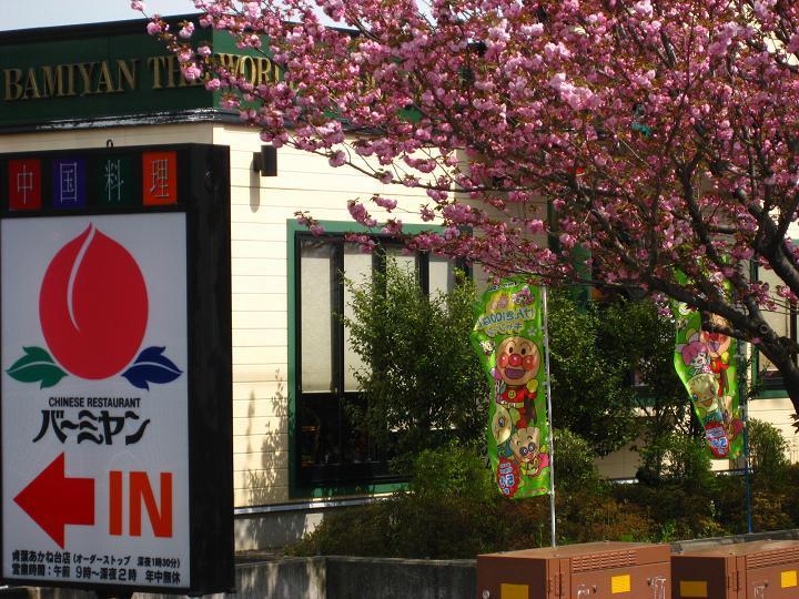 八重桜バーミヤン