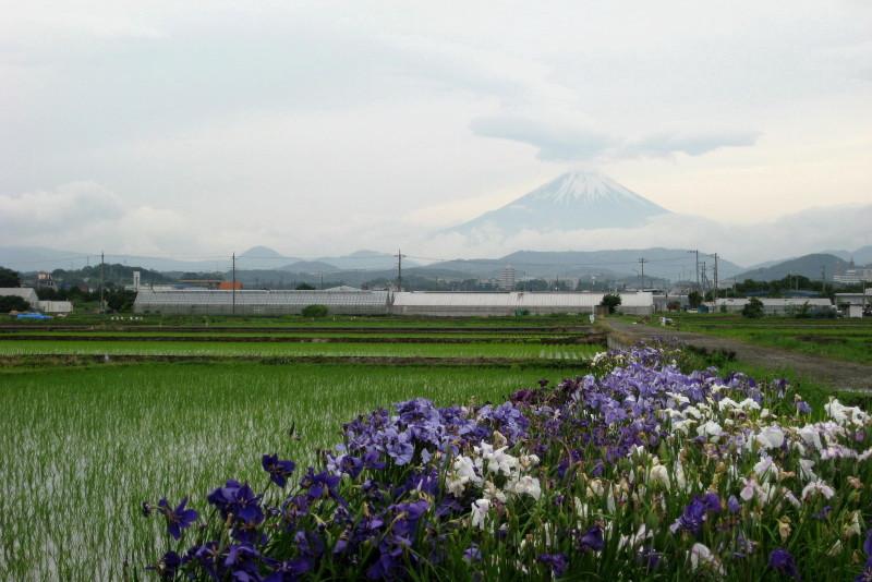 ⇒アメブロ批評なう富士山