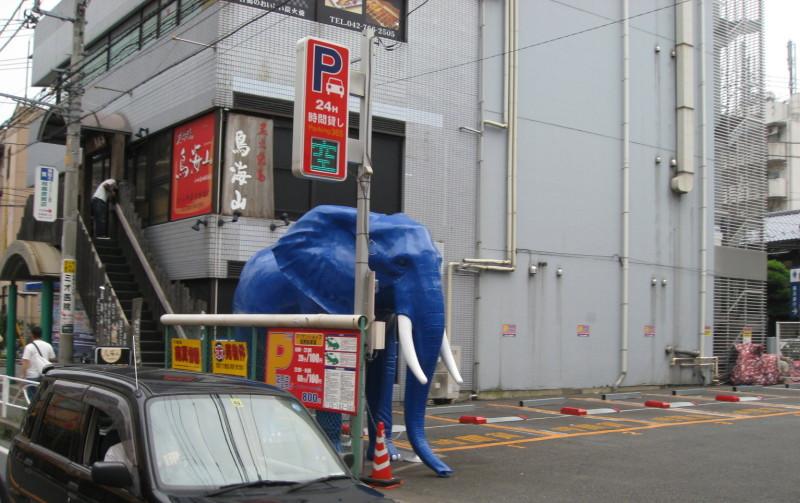 オダサガの象画像