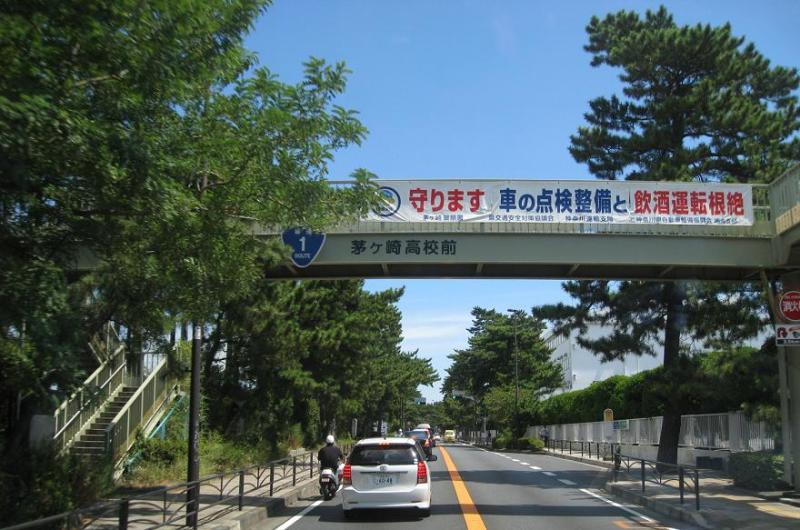茅ヶ崎国道1号東海道松並木