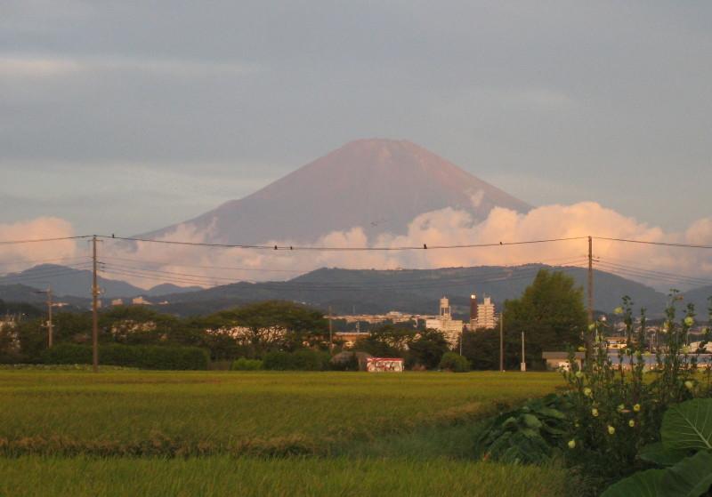貴重!神奈川県からの赤富士画像[2010年9月7日]