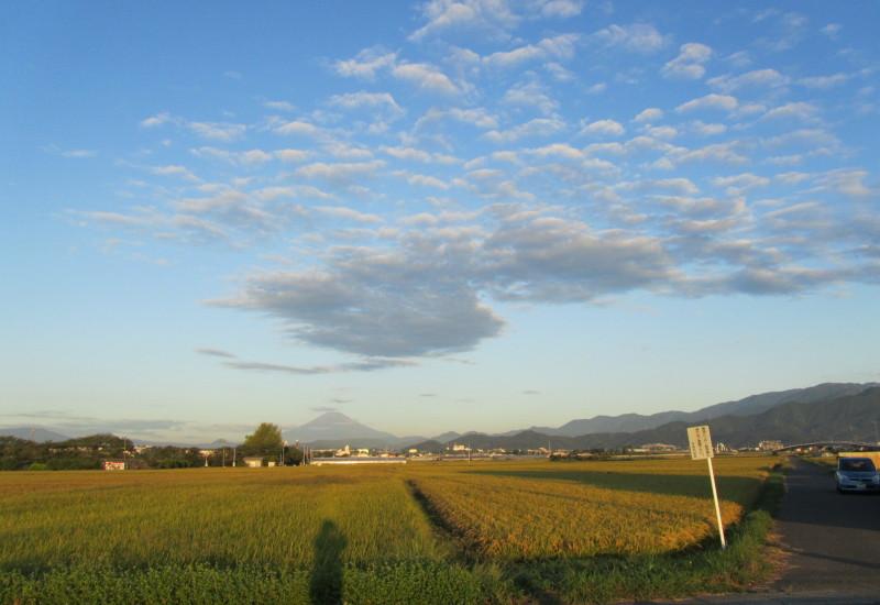 富士山 うろこ雲