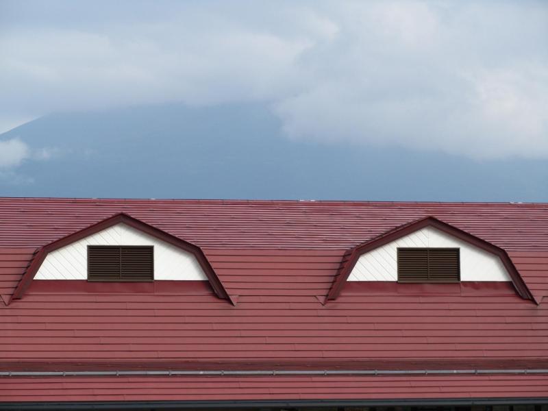 道の駅朝霧 目みたい窓の屋根