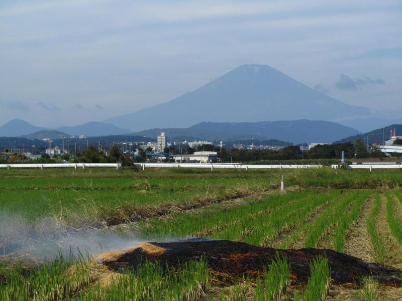 秋の田んぼ 富士山