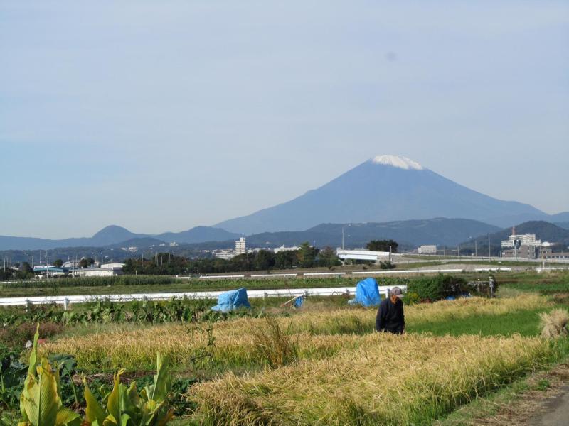 富士山と秋の田んぼの爺さん
