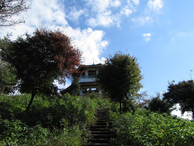 秦野市弘法山公園 権現山展望台