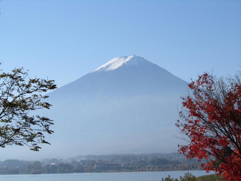 富士山 河口湖 紅葉もみじ