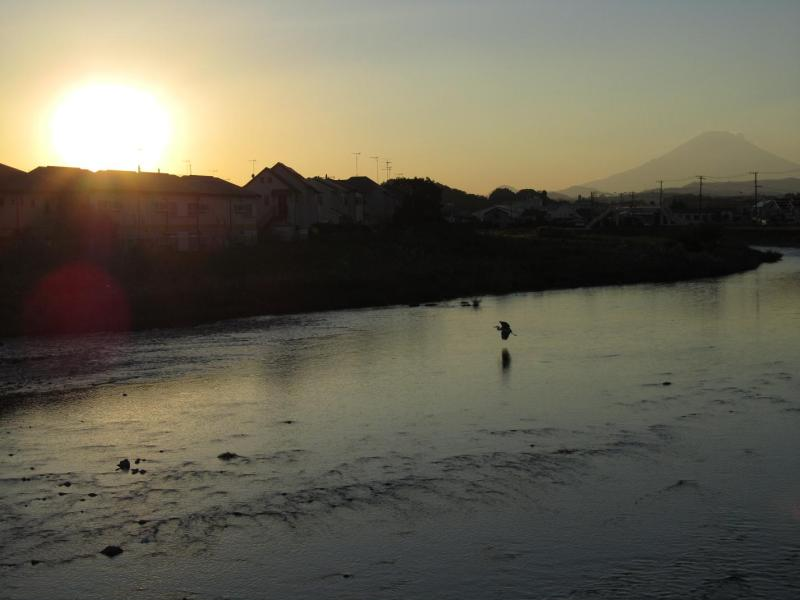 金目川 富士山 夕日