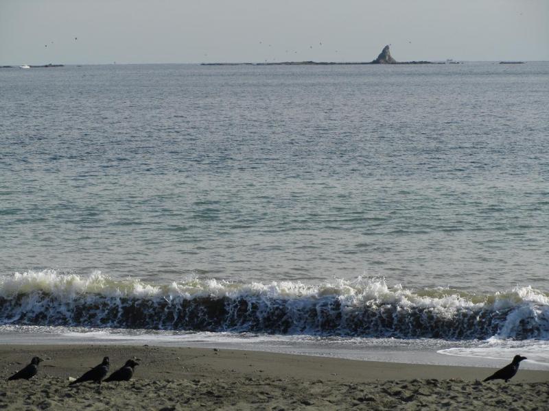 茅ヶ崎サザンビーチ 烏帽子岩