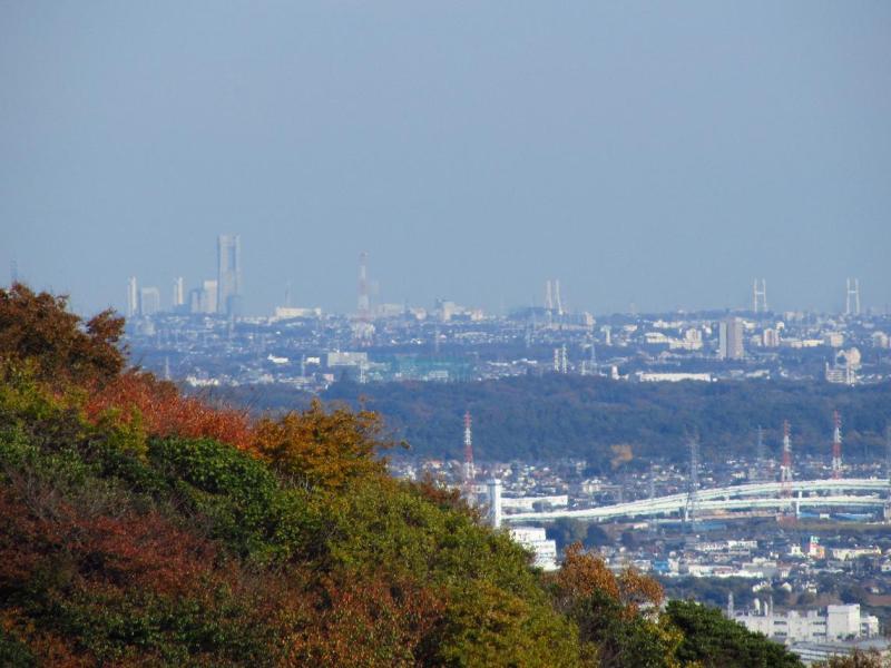 湘南平からの横浜ランドマークタワー ベイブリッジ