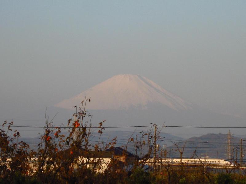 富士山 柿 新幹線