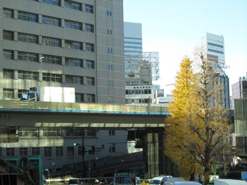 渋谷 画像