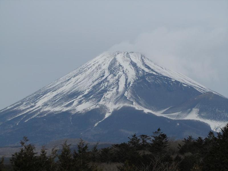 富士山 子供の国付近