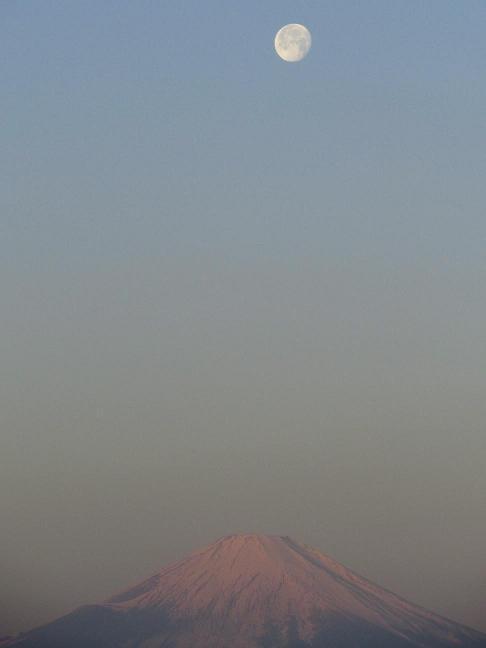紅富士と月