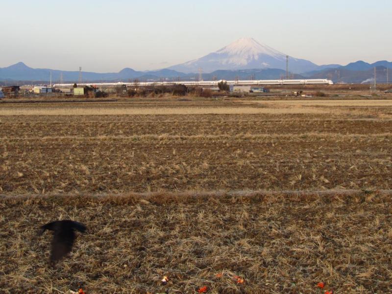 田んぼKARAs新幹線富士山写真