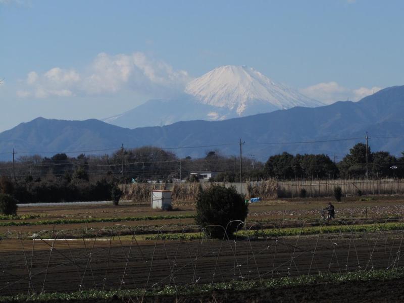 ⇒富士山 綾瀬