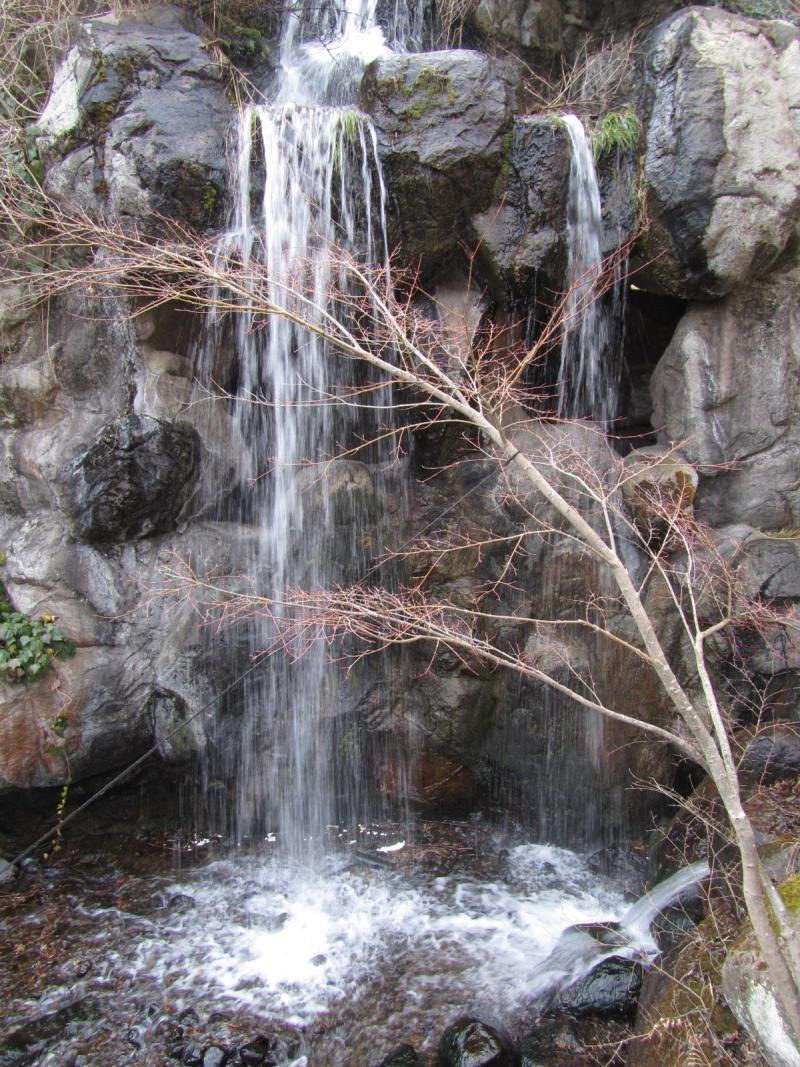 熱海梅園 滝 画像