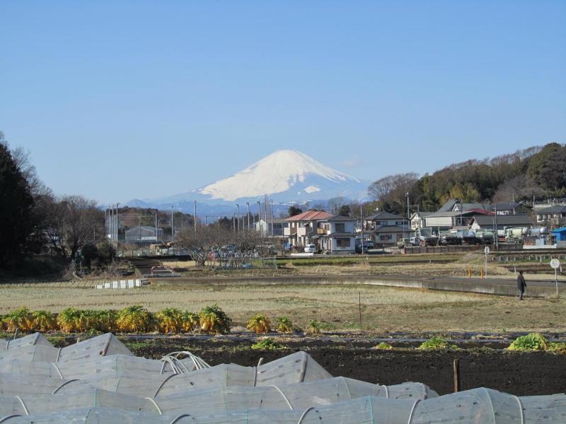 茅ヶ崎 富士山