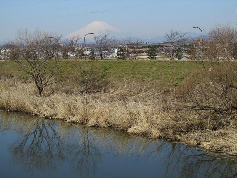 富士山 平塚 渋田川