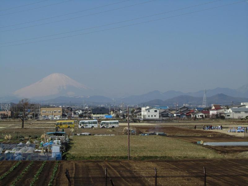 富士山 幼稚園児