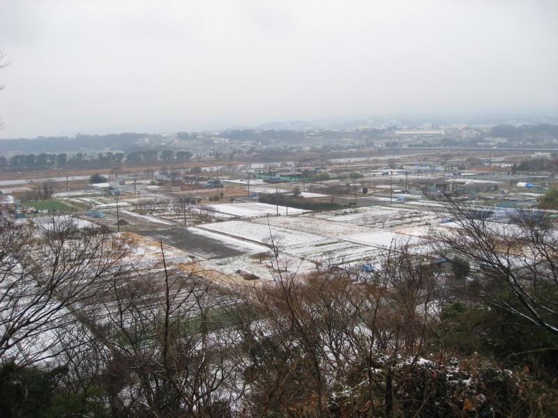 相模原市の八景の棚 雪景色