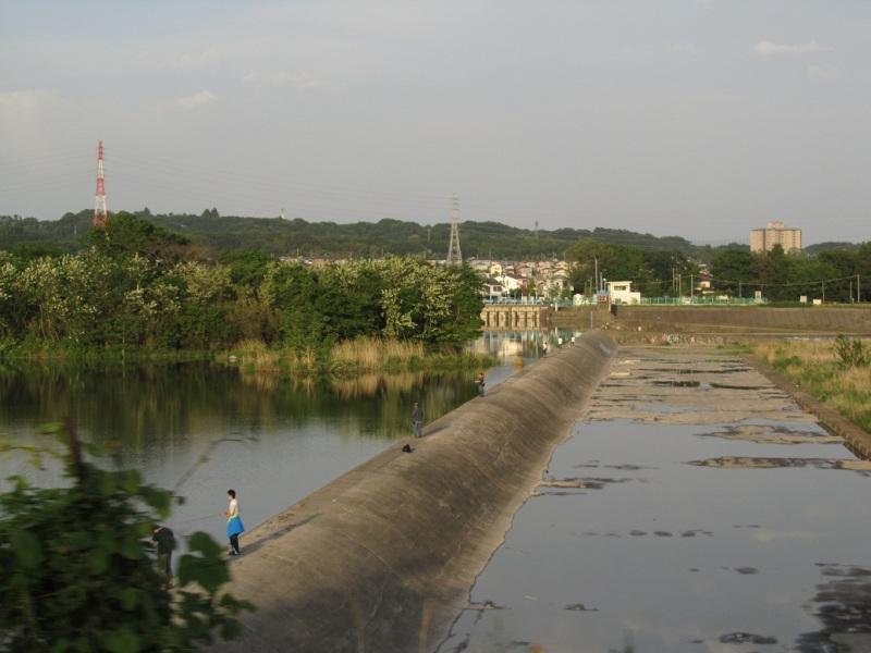 相模川 サオ画像