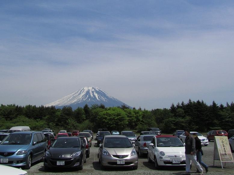 富士芝桜まつり2011開花状況まばらで入園料無料情報の写真画像