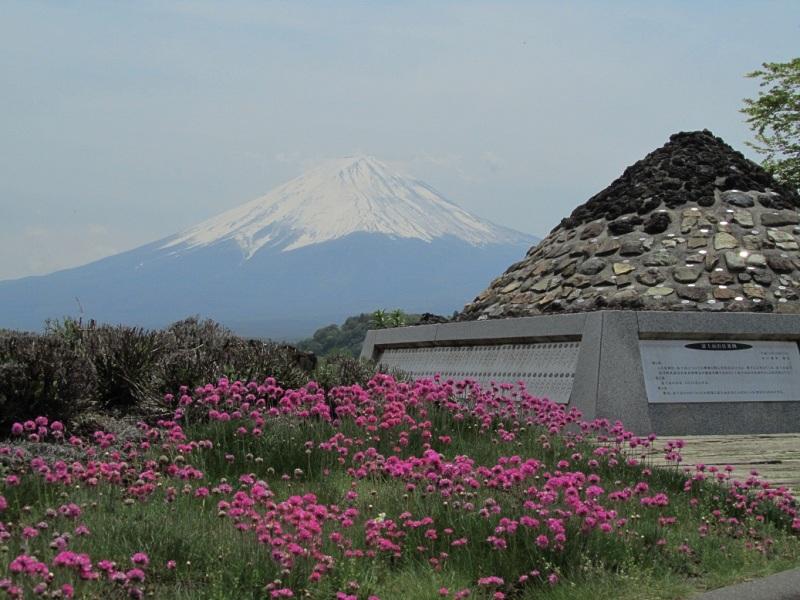 W富士山 大石公園 アルメリア