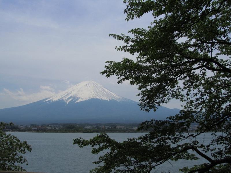 富士山 河口湖 長崎公園