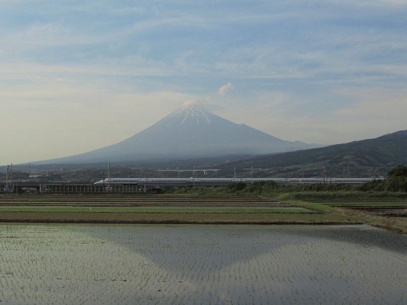 富士 田んぼ 新幹線