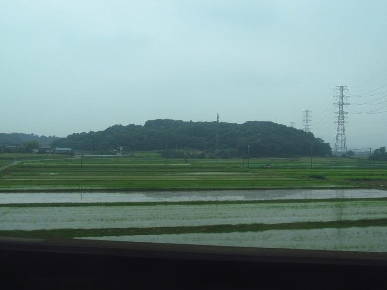 熊谷周辺の田んぼ