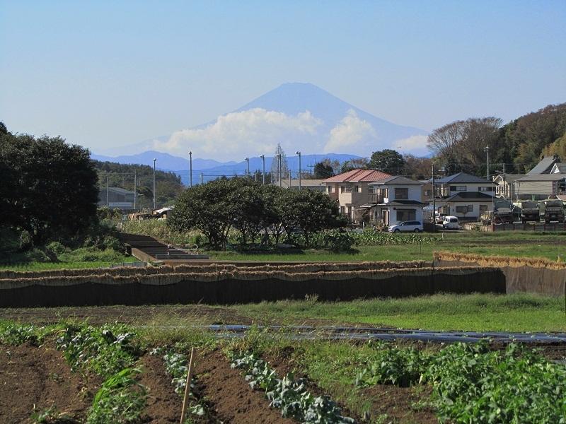 茅ヶ崎市堤 富士山